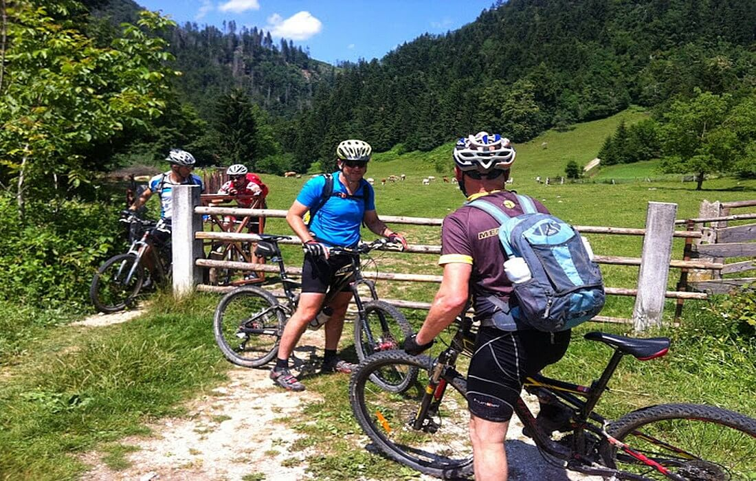 Mtb tours on Pokljuka plateau in Slovenia